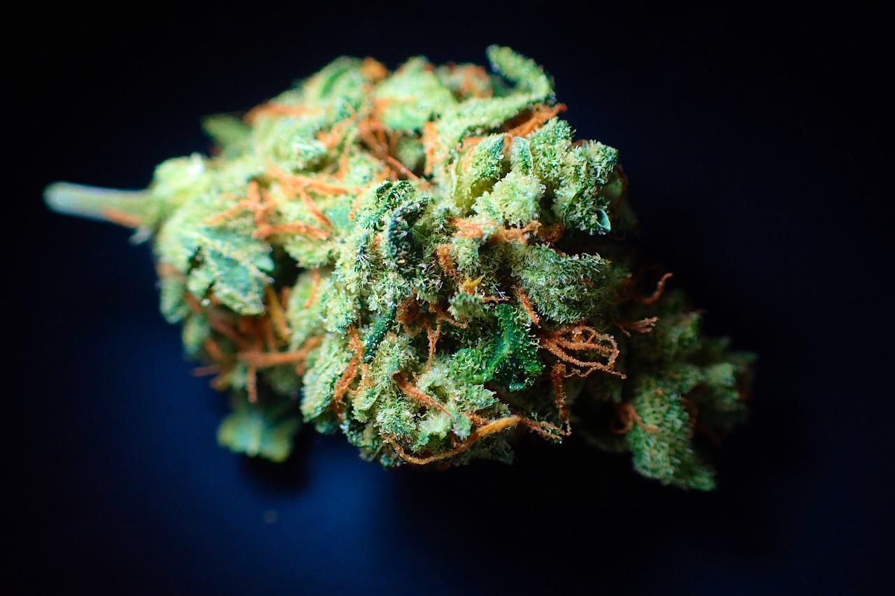 Chronic Drug Use
